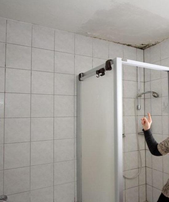 Moho techo baño