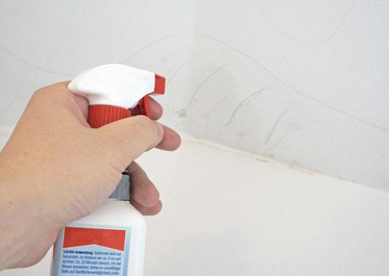 Productos para limpiar el moho de baño y paredes